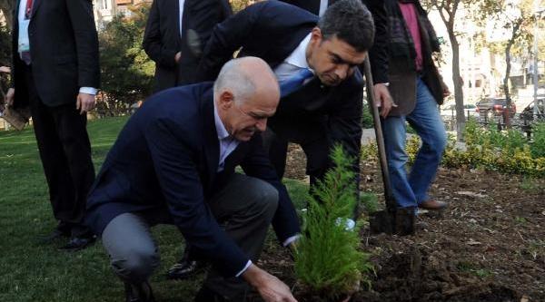 Yorgo Papandreu, Gezi Parki'na Fidan Dikti