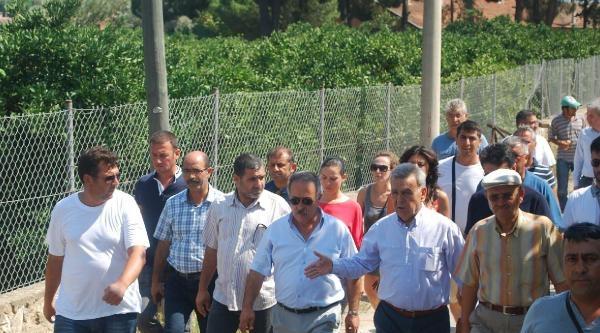 Zeytinköy'de Alevi Mezarlarına Saldırı Kınandı