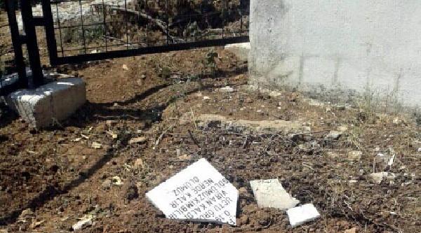 Zeytinköy'de Bazı Alevi Mezarları Tahrip Edildi