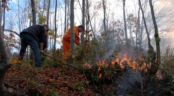 Zonguldak'ta 2 Hektarlik Orman Yandi-Fotoğraflar
