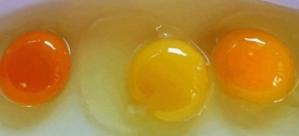 Yumurta sarısı böyleyse dikkat!